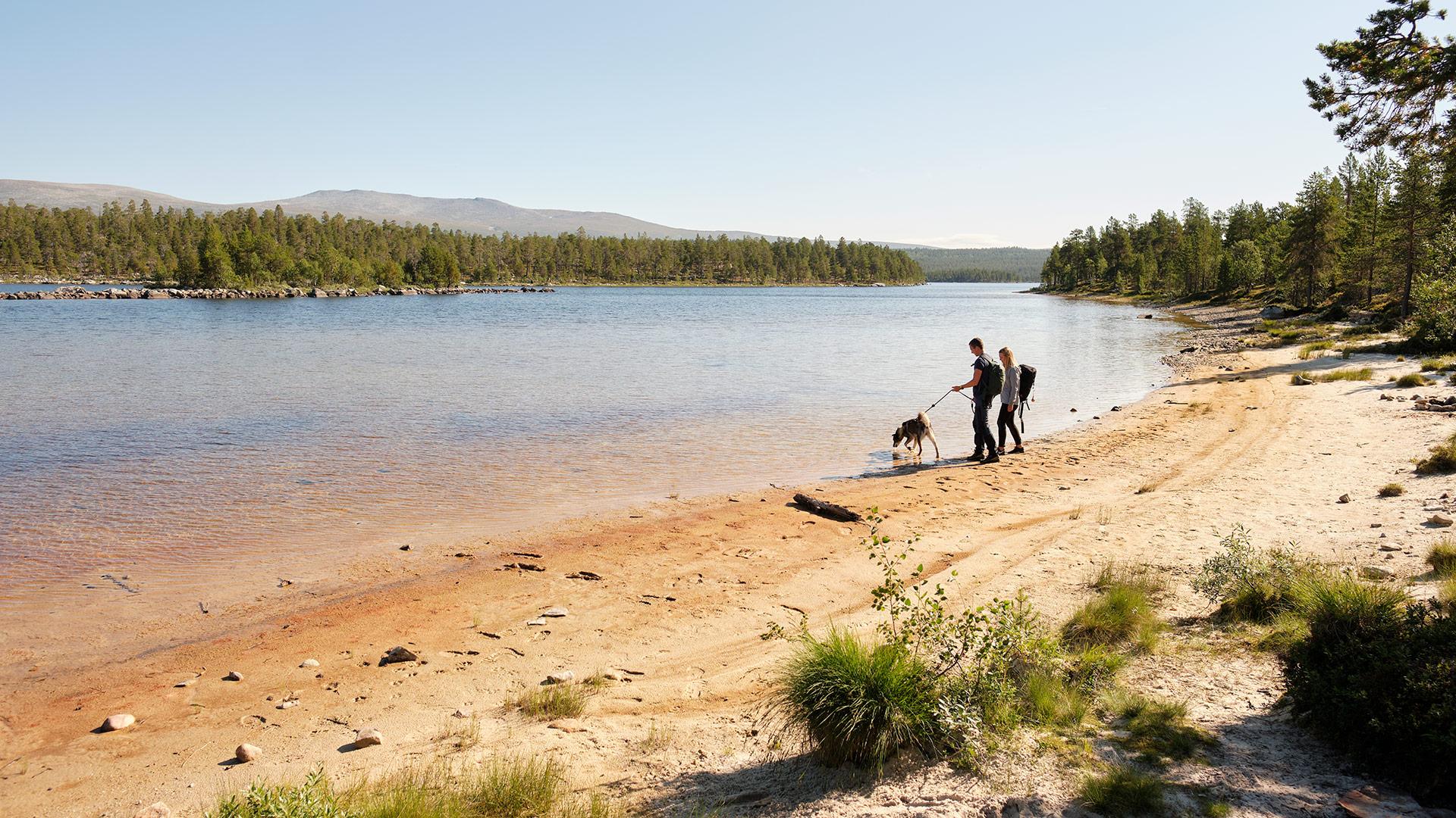 Personer og en hund på en strand ved innsjø.