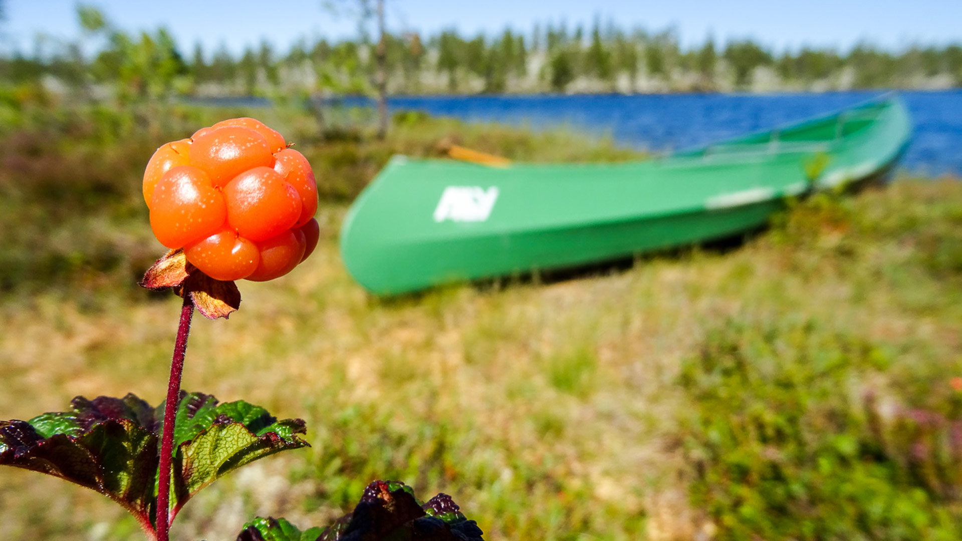 Berrys and boat