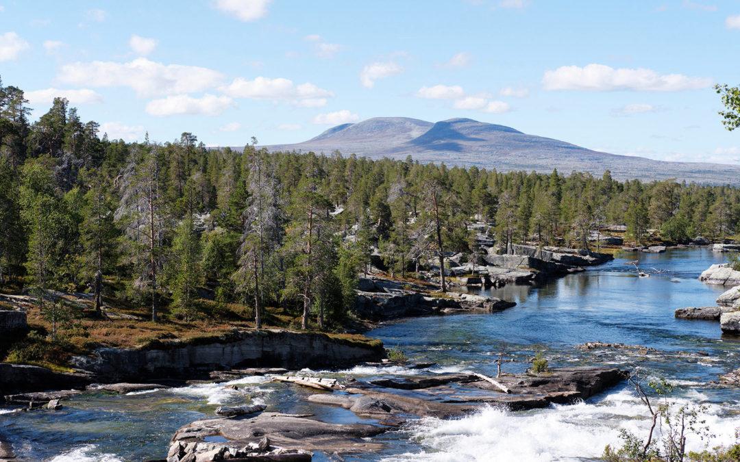 Femundsmarka nasjonalpark har 50-års jubileum